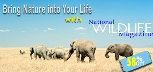 wild life magazine subscription discount