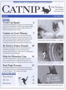 Catnip Magazine Subscription