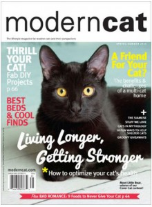 Modern Cat Magazine Subscription