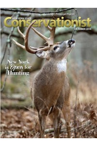 New York Conservationist Magazine