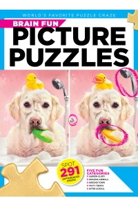 Brain Fun Picture Puzzles Magazine